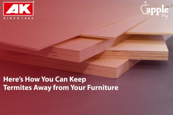 Here's How You Can Keep Termites Away from Your Wooden Furniture